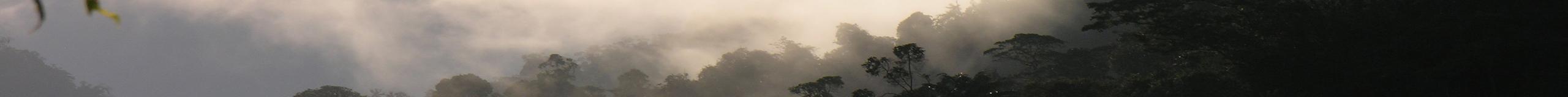 Équateur, Pays de contraste, </br>Andes, Amazonie et côte Pacifique