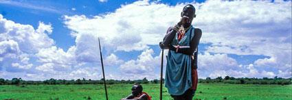 Dream safaris<br>in Tanzania