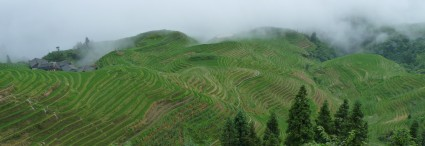 Classical China </br> and its Rice Field Terraces