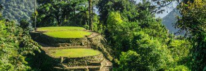 Colombie : Aventure et randonnée à la cité perdue