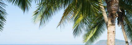 Costa Rica, Communauté et Nature, volcan, forêt tropicale et Playa Samara