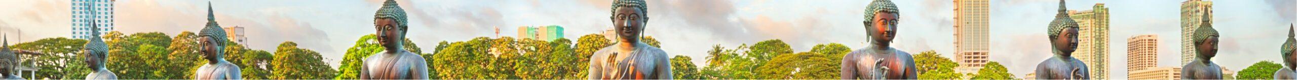 Le Sri Lanka,</br>Le pays du sourire !