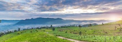 Voyage communautaire au Guatemala